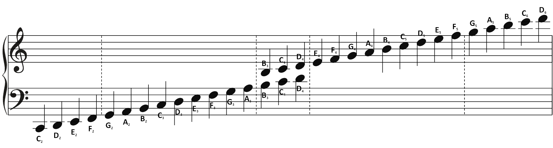 Study bass note reading